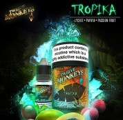 12monkeys__0008_12M_TPD_Tropika_SQ_EN